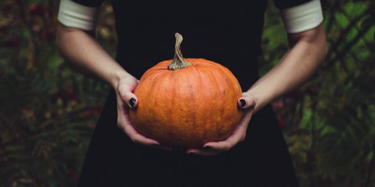 Ask BWC: What do witches do on Halloween